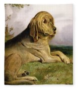 A Bloodhound In A Landscape Fleece Blanket