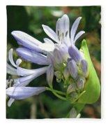A Blooming Bud Fleece Blanket