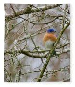 A Bluebird  Fleece Blanket