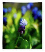 A Bunch Of Flowering Two-tone Grape Hyacinths, No.2. Fleece Blanket