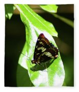 A Butterfly In The Sun  Fleece Blanket