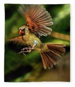 A Cardinal Approaches Fleece Blanket