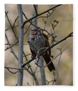 A Chipping Sparrow Fleece Blanket