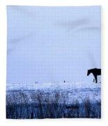 A Cold Winter Fleece Blanket