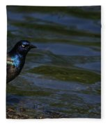 A Common Grackle Fleece Blanket