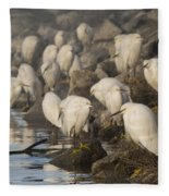 A Congregation Of Egrets Fleece Blanket