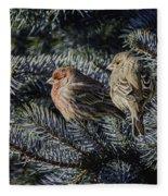 A Couple Of House Finch Fleece Blanket