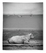 A Cow On The Beach Fleece Blanket