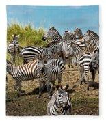 A Dazzle Of Zebras Fleece Blanket