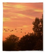 A Different Approach To Sunset Fleece Blanket