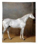 A Favourite Grey Horse Belonging To George Reed Standing In A Loose Box Fleece Blanket