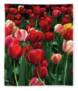 A Field Of Tulips Fleece Blanket
