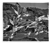 A Flock Of Seagulls Flying High To Summer Sky Fleece Blanket