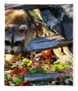A Foraging Raccoon Fleece Blanket