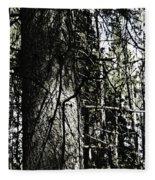 A Forest Walk Fleece Blanket
