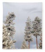 A Frosty Morning 2 Fleece Blanket