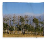 A Gathering Of Crows Fleece Blanket