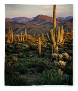 A Golden Sonoran Evening  Fleece Blanket