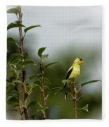 A Goldfinch In A Pear Tree Fleece Blanket