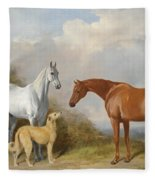 A Grey And A Chestnut Hunter With A Deerhound Fleece Blanket