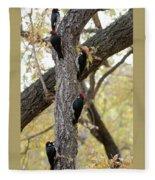 A Group Of Acorn Woodpeckers In A Tree Fleece Blanket