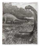 A Group Of Brontosaurs, Or Thunder Fleece Blanket