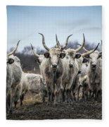 Grey Cattle Herd Fleece Blanket