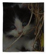 A Hiding Kitten Fleece Blanket