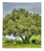 A Hill Country Moment Fleece Blanket