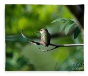 A Hummingbird Rests Fleece Blanket