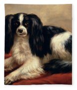 A King Charles Spaniel Seated On A Red Cushion Fleece Blanket