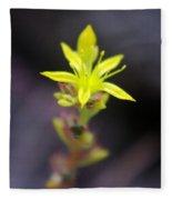 A Little Yellow Star  Fleece Blanket