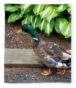A Male Mallard Duck 4 Fleece Blanket