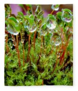 A Microcosm Of The Forest Of Moss In Rain Droplets Fleece Blanket