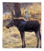 A Moose In Early Spring  Fleece Blanket