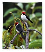 A Pair Of Redheads Fleece Blanket