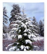 A Peaceful Winter Day Fleece Blanket