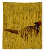 A Pheasant Looking For A Mate Fleece Blanket