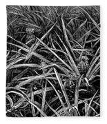 A Pineapple Field Near Nassau, Bahamas, 1883 Fleece Blanket