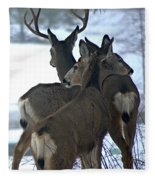 A Place To Rest Your Head Fleece Blanket