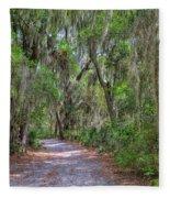 A Pleasant Stroll Fleece Blanket