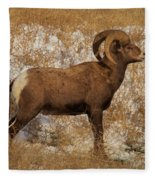 A Proud Ram Fleece Blanket