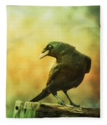 A Ravens Poise Fleece Blanket