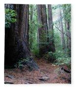 A Redwood Trail Fleece Blanket