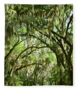A Road To The Inside Just Outside Of Savannah Fleece Blanket