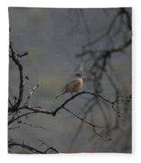 A Robin In Spring Snowfall  Fleece Blanket