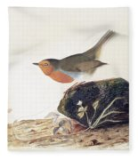A Robin Perched On A Mossy Stone Fleece Blanket