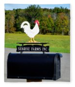 A Rooster Above A Mailbox 4 Fleece Blanket