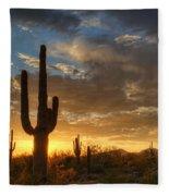 A Serene Sunset In The Sonoran Desert  Fleece Blanket