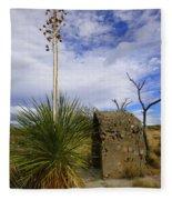 A Shrine In The Desert Fleece Blanket